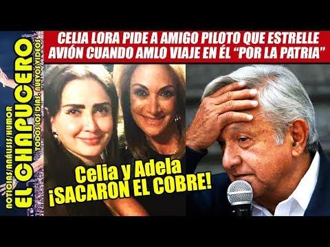 Humillan HORRIBLE Celia Lora Y Adela Micha A AMLO En Programa De TV