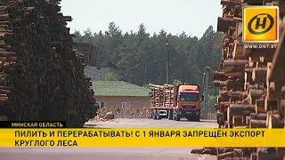 С 1 января запрещён экспорт круглого леса