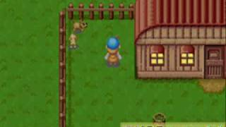 Harvest Moon FoMT my dog vs wild dog