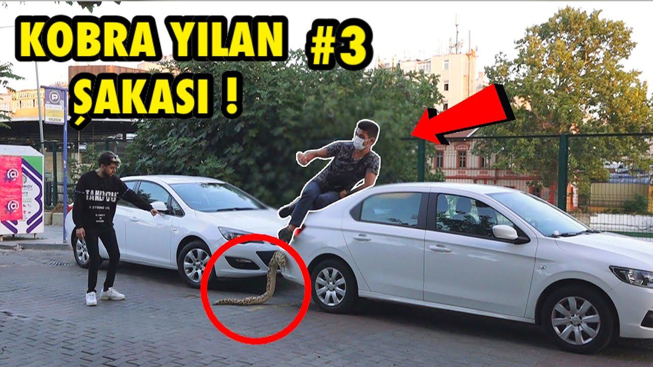 YILAN İLE KORKUTMA ŞAKASI YAPARAK TROLLEDİM 3 !