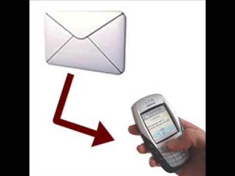 sms ou msn