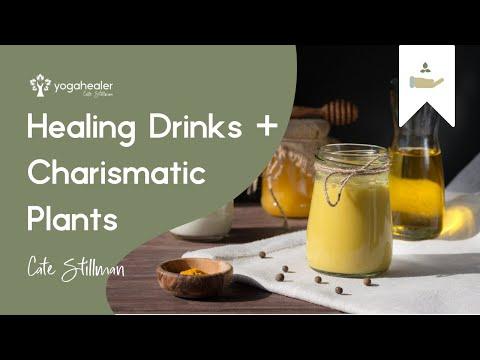 Ayurvedic Healing Drinks + Charismatic Plants with Amadea Morningstar