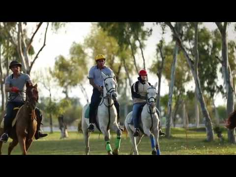 Yehi Junoon Zouq e Parwaaz Hai   PAF New Song 23 March 2016