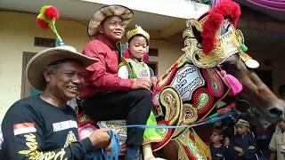Download Video Kuda renggong di Bandung MP3 3GP MP4