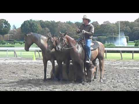 Guy McLean - Australian Horsemanship - Part 2 - 9/22/13