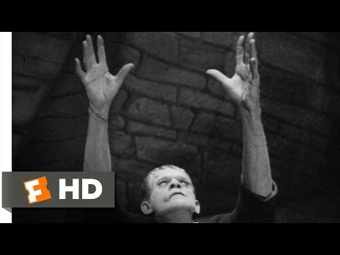 Frankenstein (3/8) Movie CLIP - Meet the Monster (1931) HD
