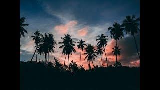 أجمل و اروع تـلاوة هادئة قد تسمعها في حياتـك ماشاء الله ..💖