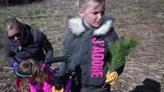 One Honda. One Tree. April 2016 Tree Planting.