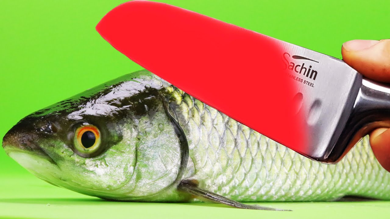 EXPERIMENT Glowing 1000 degree KNIFE VS FISH Herring
