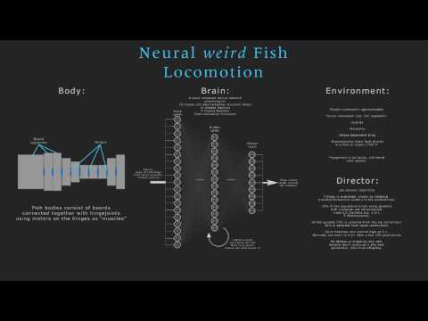 Neural Networks - Fish Locomotion
