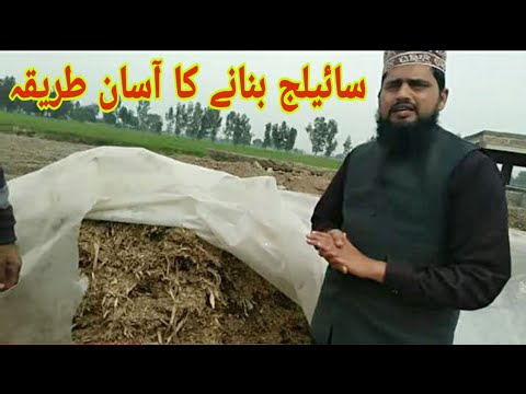Download How to make silage in Pakistan /03452171208 / what is the use of silage / سائیلج بنانے کا طریقہ