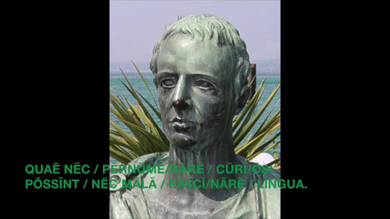 catullus 7