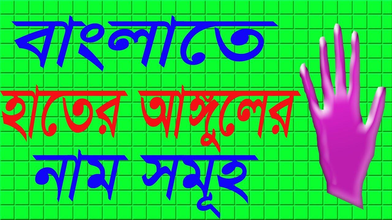 Five finger names in Bangla | Faysal Jewel