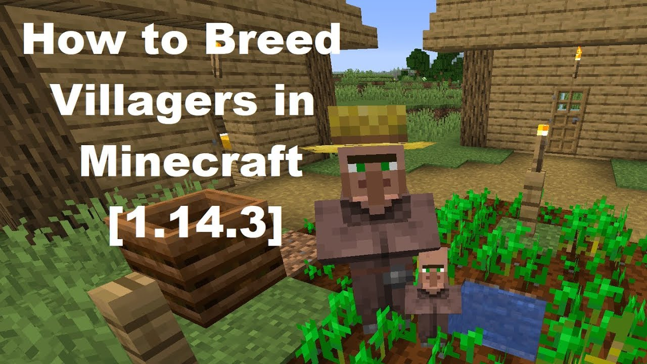 How To Breed Villagers in Minecraft [12.124.12]