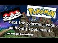 Pokemon challenge: Defeated the Pokemon league in Pokemon Y with only 3 Pokemon.