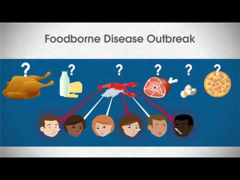 Foodborne Outbreak Investigation: What does an epidemiologist do?