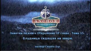 Урок 15. Заметки по книге Откровение. Даниила 11 и Откровение 17 я главы. Стивен Бор.