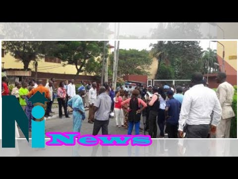 Nigeria's Federal Universities' Non Academic Staff Vow to Continue With Strike