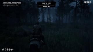 Red Dead Redemption 2 Online Live Gameplay