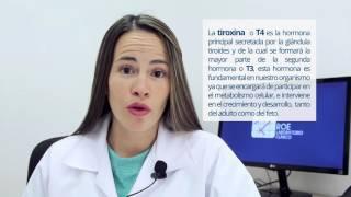 perfil tiroideo tsh t4 t3 y t3 uptake laboratorio clnico roe