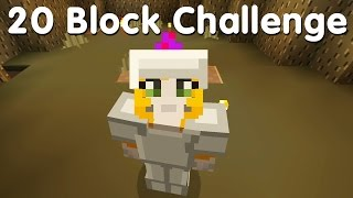 Minecraft PS4 - 20 Block Challenge - Growing My Home (19)