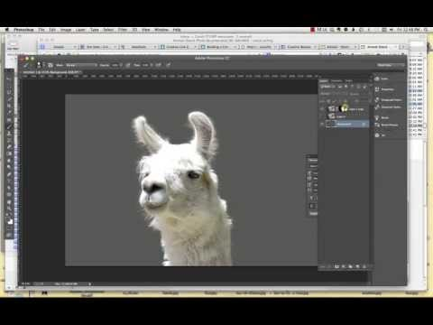 How to Make Complex Selections in Photoshop