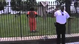 Diane Wilson of CODEPINK jumps over White House fence