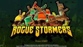 My Opinion On - Rogue Stormers