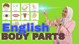 Anggota Tubuh Bahasa Inggris   Belajar Bahasa Inggris part 2
