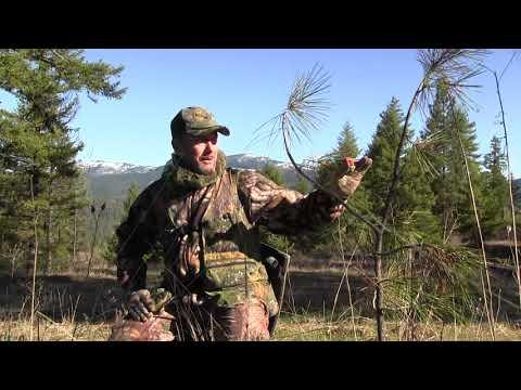 Turkey Hunting Spokane WA #57, John's First 2018 WA  Tag