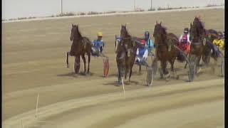 Vidéo de la course PMU PREMI STRELLA MA