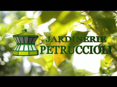 Jardinerie Petruccioli - TriPixStudio