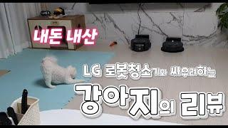 로봇청소기 적응기(Feat. 내돈 내산 LG 로봇청소기…