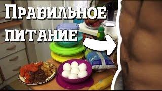 Правильное питание идеальное тело Как питаться весь день Правильное домашнее питание Что есть