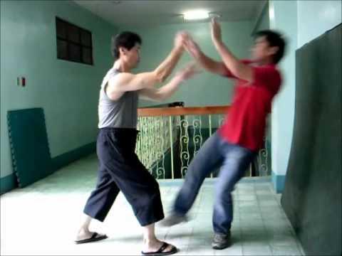 RE-UPLOADED - Xinyi Liuhebafa Xinyi Zhanzhuang - Fajing.wmv