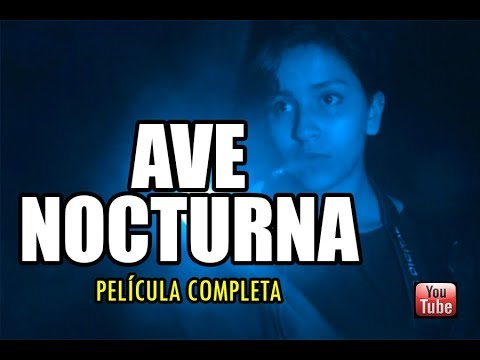 Ver Ave Nocturna – Película completa en Español