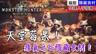 【MHW】瘴氣之谷隱藏食材!天堂莓果!快速入手指南!| 魔物獵人世界