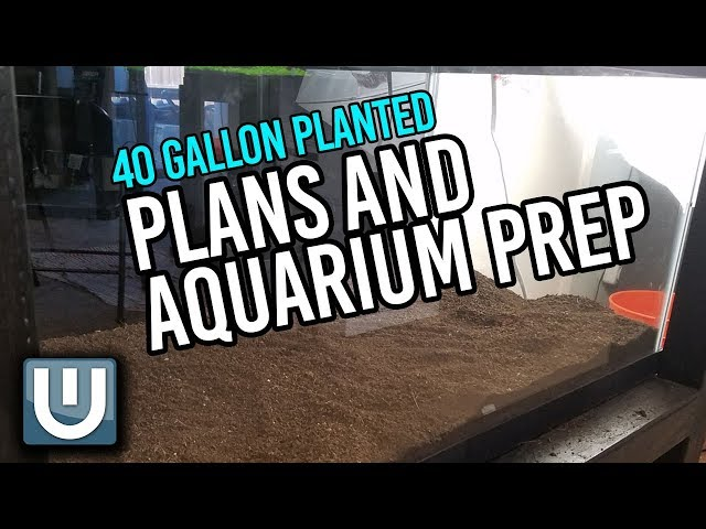 Plans and Aquarium Prep   40g Soil Tank   Part 1