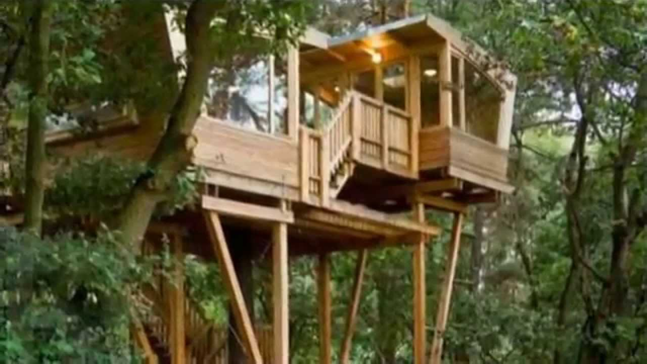 Image gallery modern treehouse for Cheap tree house plans