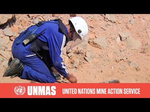UNMAS: Western Sahara