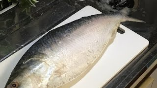 ইলিশ মাছ (How to cut Hilsha Fish)