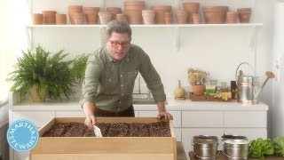 Learn & Do Planting A Lettuce Garden - Home How-to Series - Martha Stewart