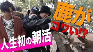 SixTONES [First Experience in Morning Activity] In a Bind Surrounded by Deers?