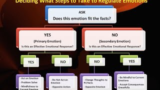 Emotions and secondary emotions primary DBT Skills: