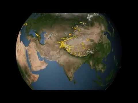 هند - ویکیپدیا