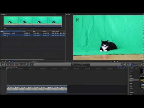 Final Cut Pro X: Keyer (Green Screen) Using Chroma Key in FCPX