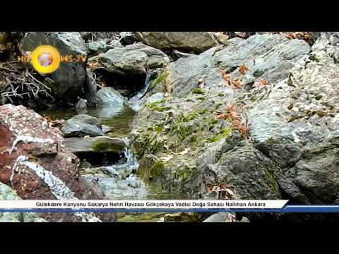 gülekdere kanyonu sakarya nehri havzası gökçekaya vadisi doğa sahası nallıhan ankara