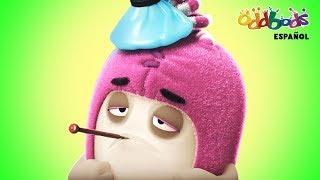 Doctor Odd | Caricaturas Graciosas para Niños | Show de Oddbods