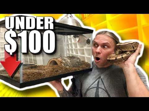 BALL PYTHON SETUP FOR UNDER $100! Brian Barczyk
