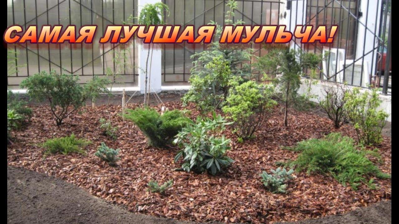 Мульча своими руками видео фото 529
